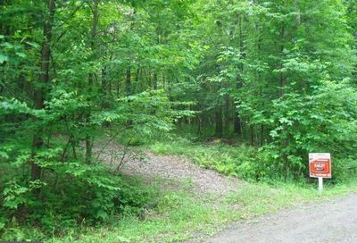 Lot 24 Bear Creek Forest Accident MD 21520