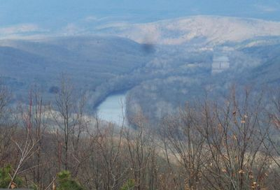 3 Overlook Lane Great Cacapon null 25422