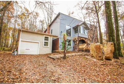 694 State Road Coopersburg PA 18036