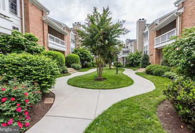 4525 28th S Road 3-5 Arlington VA 22206