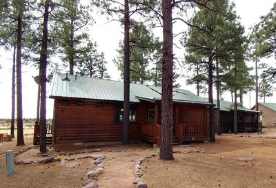 2723 High Pines Loop Overgaard AZ 85933
