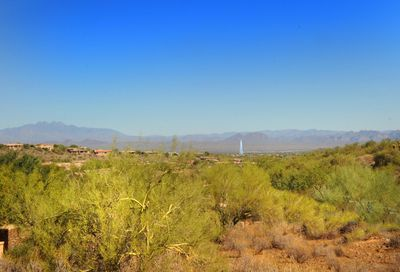 15831 N Mountain Parkway Fountain Hills AZ 85268