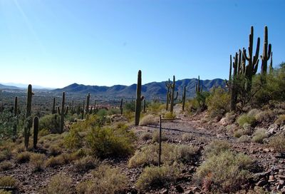 Lot N 202-20-698 -- New River AZ 85087