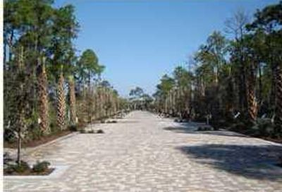 Lot 23 Cottages At Eastern Lake Santa Rosa Beach FL 32459