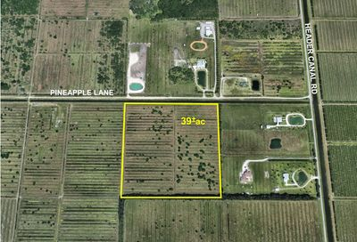 Tbd Pineapple Lane Fort Pierce FL 34945
