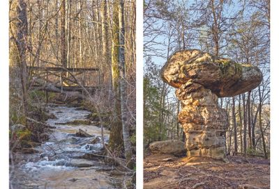 180.7 Acre Wagner Tract Signal Mountain TN 37377