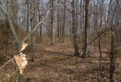 6.50 Ac Hatcher Rd Moss TN 38575