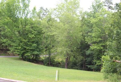 Wood Chase Lane Spring City TN 37381