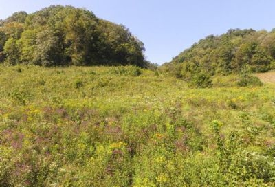 72.68 Ac. South Fork Road Whitleyville TN 38588