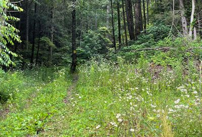 Oosterneck Rd Tellico Plains TN 37385
