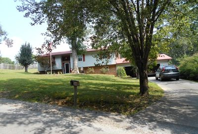 208 County Road 146 Riceville TN 37370