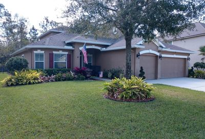 271 Willow Winds Pkwy St Johns FL 32259
