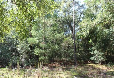 00 Miller Rd Interlachen FL 32148