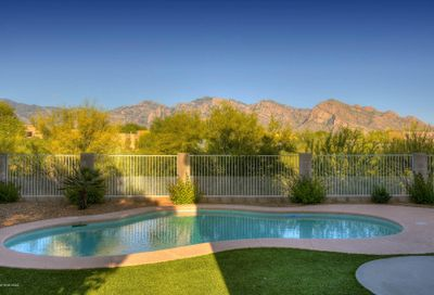 11284 N Cactus Rose Drive Oro Valley AZ 85737