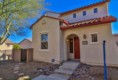 10565 E Native Rose Trail Tucson AZ 85747