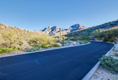 2164 E Buck Ridge Place Oro Valley AZ 85737