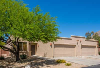 8134 N Peppersauce Drive Oro Valley AZ 85704