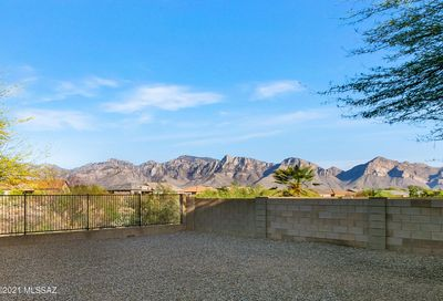 12984 N Yellow Orchid Drive Oro Valley AZ 85755