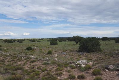 Lot 40 E Apache County Road 6040 Road St Johns AZ 85936