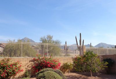 10528 E Salt Bush Drive Scottsdale AZ 85255