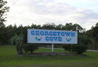227 Dogwood Ave Georgetown FL 32139
