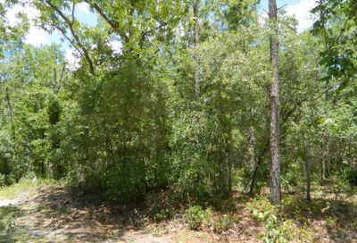 Janet Ave Interlachen FL 32148