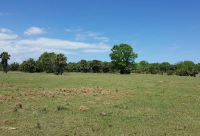 0000 County Line Ditch Road Mims FL 32754