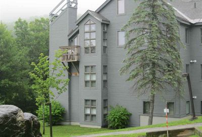 48 BRAD MEAD  DR (SS J101) Killington VT