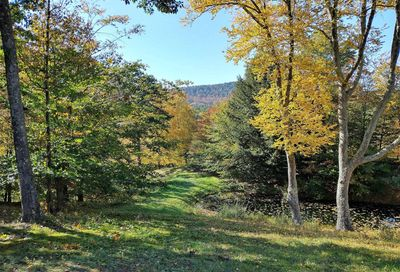 part of 1320 Lee Road Guilford VT 05301