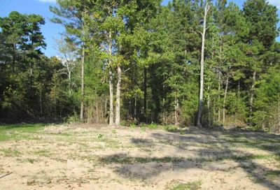 Lot 33 Little Hickory Dr Gladewater TX 75647