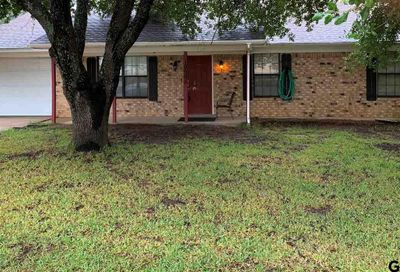 10585 Rolling Pines Dr Tyler TX 75707