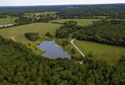 493.776 ACRES HIGHWAY 135 Troup TX 75789
