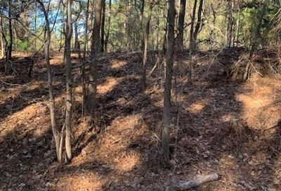 18245 CR 361 (19.5 acre) Winona TX 75792