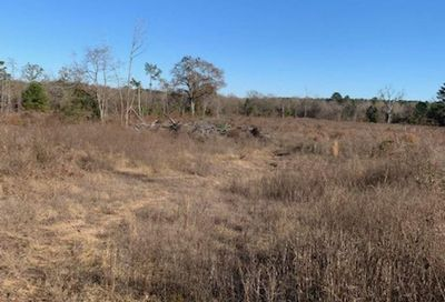 18245 CR 361 (62 Acres) Winona TX 75792