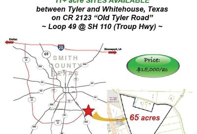 10486 County Road 2123 Whitehouse TX 75791