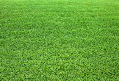 801 NEW ROAD (ROUTE 9) Somers Point NJ 08244