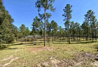 Vacant NW Boggy Bay Madison County FL 32331