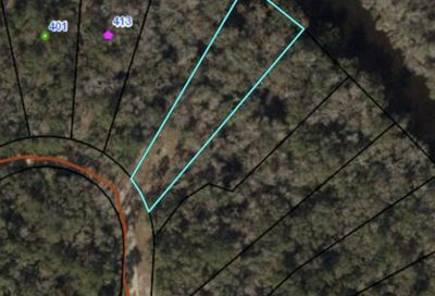 431 NE Madison Bluffs Way Lee FL 32059