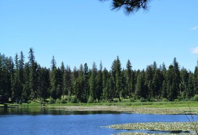 8523 N Placid Lake Rd, Seeley Lake Other-See Remarks MT 59868