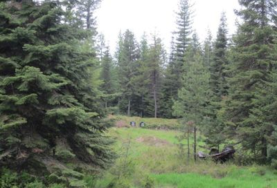 65 Copper Ridge Road, Trout Creek Other-See Remarks MT 59874