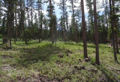 Tract 2 S Placid Lake Rd, Seeley Lake Other-See Remarks MT 59868