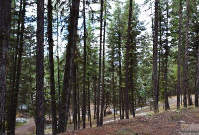 378 Bobcat Ln, Seeley Lake Other-See Remarks MT 59868
