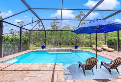 10157 Silver Maple Ct Fort Myers FL 33913