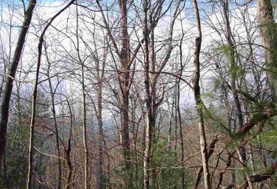 Black Branch Rd Rabun Gap GA 30568