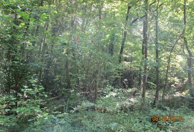 Lot 8 Highland Drive Sautee GA 30571