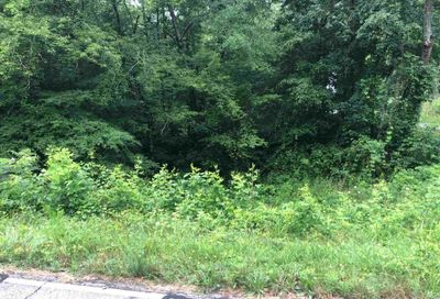 Old Mill Rd Eastanollee GA 30538