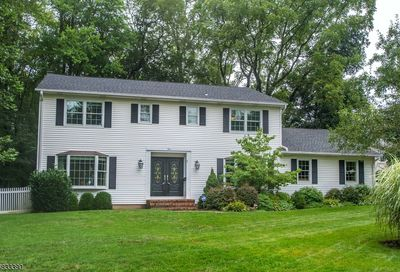 4 Thayer Ct Florham Park Boro NJ 07932-1703
