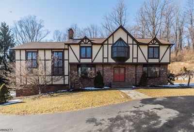 8 Rock Spring Rd Chester Twp. NJ 07930-2724