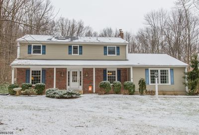 19 Delwood Rd Chester Twp. NJ 07930-2126