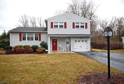 70 Westminster Dr Parsippany-Troy Hills Twp. NJ 07054-4061